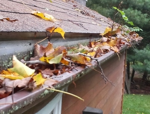 Eastern Connecticut & Rhode Island clogged gutters
